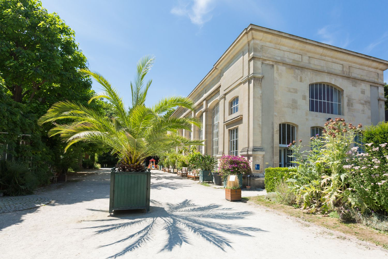le jardin des plantes de caen est lun des premiers espaces botaniques de france install en 1689 cest plus de 8 000 espces vgtales exotiques et - Jardin Des Plantes Caen