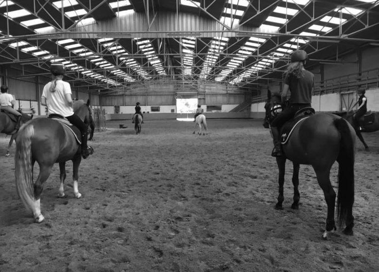 centre-equestre-caen-shuc-stages