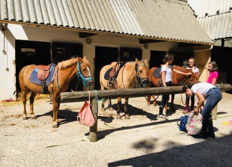 centre-equestre-caen-shuc-poney-club