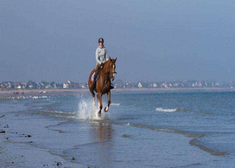 Balade cheval plage Calvados (11)