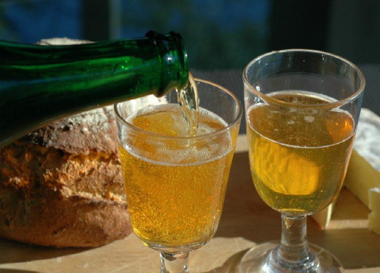 CALVADOS-VERRE-CIDRE-ALCOOL-PAIN-FROMAGE-13735-JM
