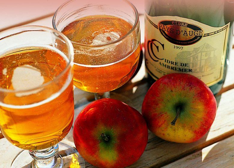 CALVADOS-VERRE-CIDRE-ALCOOL-POMME-13725-JM