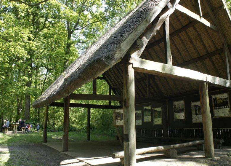 Cabane forêt Grimbosq
