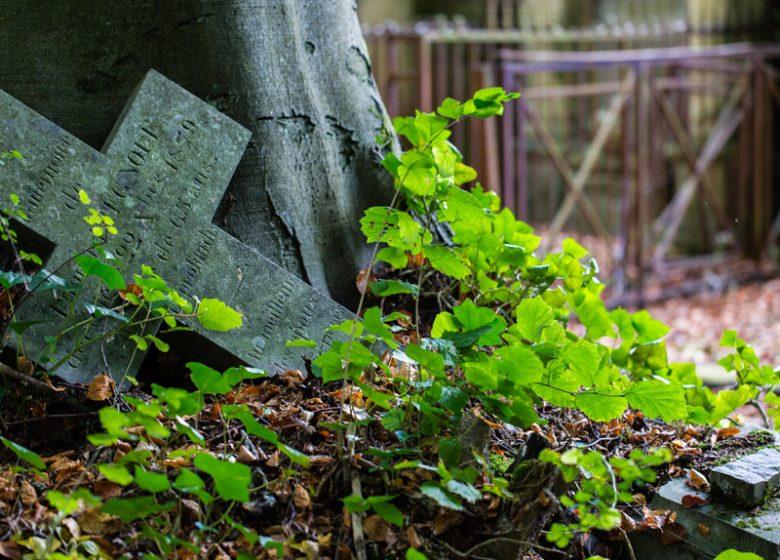 Détails du cimetière dormant Saint Nicolas à Caen