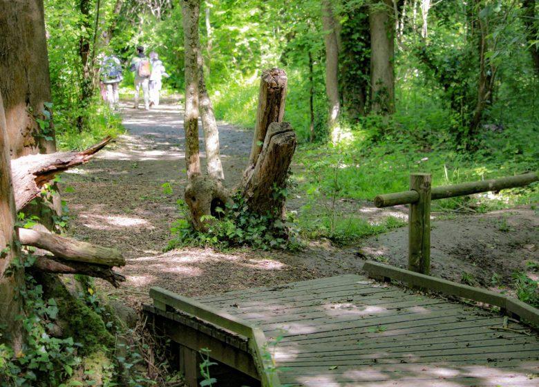 ENS Bois du Caprice – Mai 2021