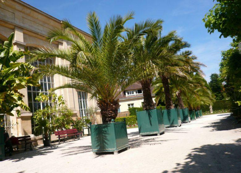 Jardin Plantes – Rémy – 800×600