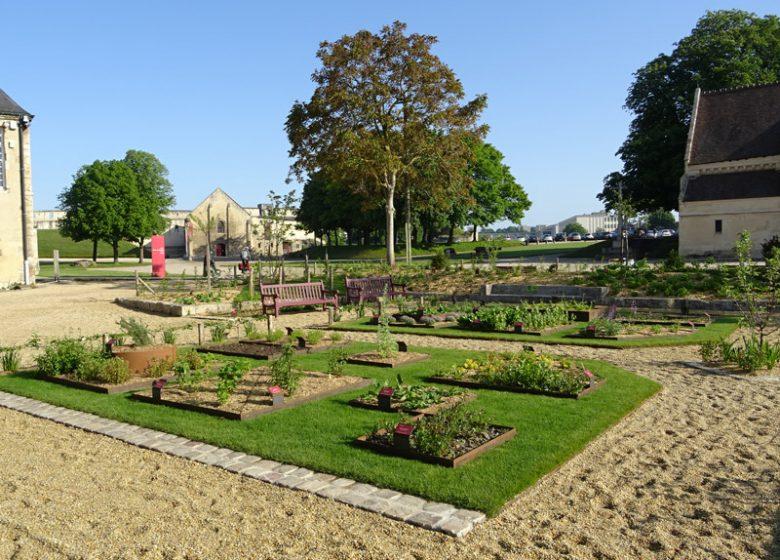 Jardin des simples au château de Caen
