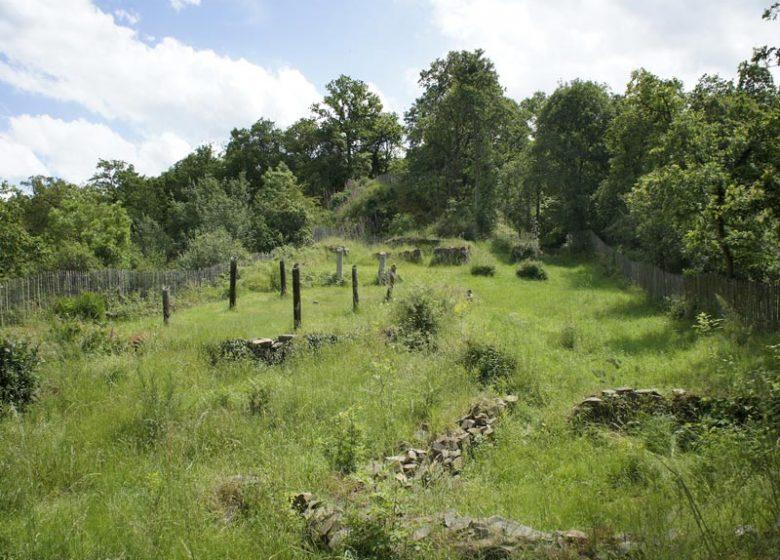 Motte d'Olivet Grimbosq