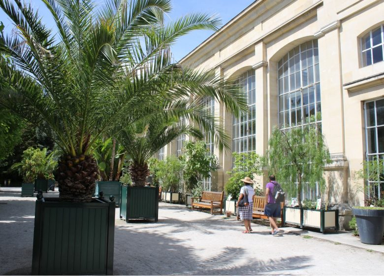 jardin-des-plantes-l-orangerie