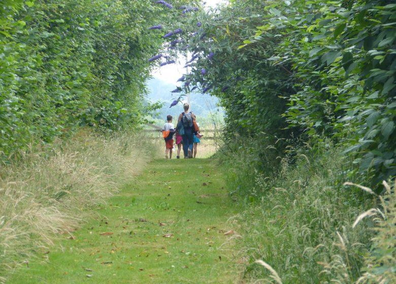 Sentier d'orientation Cahagnes